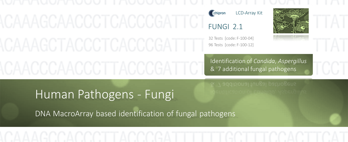 LCD-Array kit products for the identification of fungal pathogens